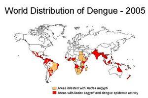 dengue fever distribution