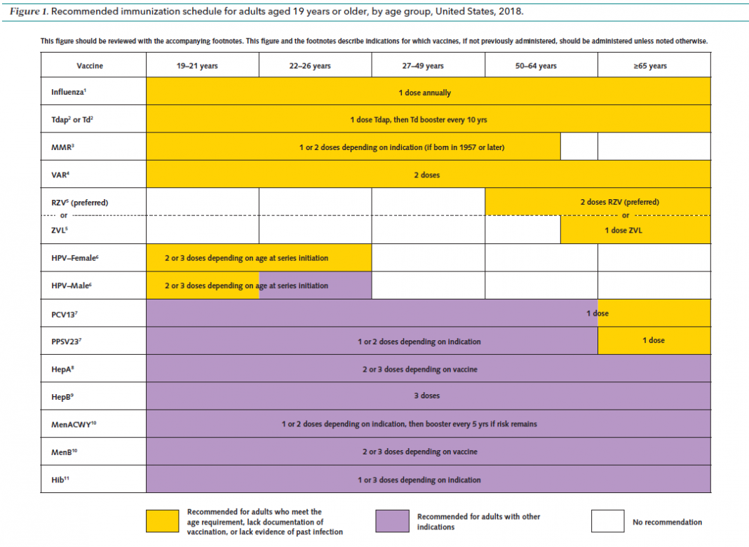 CDC Vaccination Schedule for Adults - Updated guidelines ...